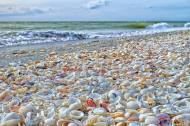 Beautiful-Sanibel-Island-Florida