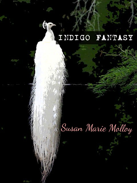 Indigo Fantasy Book Cover