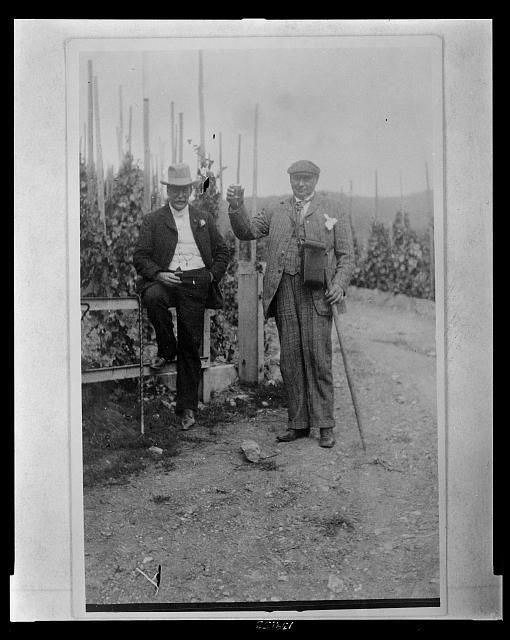 Gentlemen Harvesting Hops and Stories